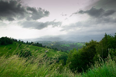 DSC_0323 (Robert Bridinel .) Tags: sky cloud mountain mountains tree verde green robert nature grass pine landscape nikon pin natural hill natura hills romania nori bran iarba brazi d3200 rucar bridinel