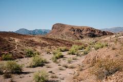 5R6K2888 (ATeshima) Tags: arizona nature havasu