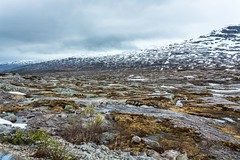 On the road to Melfjordbotn (Einar Schioth) Tags: summer sky cloud mountain snow mountains ice nature water norway clouds canon landscape norge photo day outdoor ngc picture nationalgeographic einarschioth melfjordboten