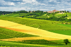 Monferrato (Italy): landscape (clodio61) Tags: blue summer sky italy panorama house mountain plant alps color tree green nature field rural landscape photography vineyard italian europe day village outdoor farm country hill scenic meadow vine sunny valley land agriculture typical piedmont monferrato