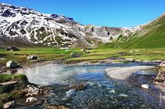 Engstligenalp (welenna) Tags: alpen alps adelboden switzerland summer snow schnee schwitzerland sky swiss steine stone berge blue mountains mountain engstligenalp wasserspiegel water wasser bach berneroberland