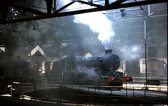 DH - 7029 -TYSELEY MPD (derek46240) Tags: castle 1966 steam clun roundhouse tyseley mpd 7029