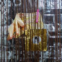Weaving Diary Tapestry Tagebuch Teppich 16. 1. 2016 Mayerling Stift Heiligenkreuz Friedhof Heiligenkreuz Mary Vetsera Archiv Photo Tagebuch Diary Ausflug Trip unterweg Rundgang (hedbavny) Tags: gold blutgold blut blood latex einmalhandschuh ausflug outing trip rundgang spaziergang mayerling karmel karmelmayerling jagdschloss kloster karmelitinnen museum exhibition vetsera maryvetsera friedhof heiligenkreuz grab grave tomb kapelle graveyard cemetery handschuh glove mund mouth taler goldtaler sarg coffin tragödievonmayerling doppelselbstmord selbstmord suicide tapestry diary tagebuch tapisserie loom webstuhl weavingloom weben gewebt kette schus warp weft weaving weave weber teppichweber tapisserieweber reflektor reflection reflex reflektion reflexion spiegel spiegelung mirroring portrait porträt gesicht face hedbavny ingridhedbavny