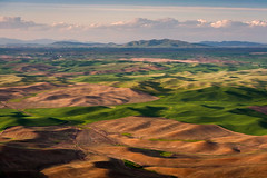 Washington Palouse (EdBob) Tags: palouse steptoe steptoebutte steptoebuttestatepark farm farmland farming spring springtime easternwashington washington washingtonstate washingtonstatetourism colorful rural country countryside whitmancounty sunset sunlight hills mountains light shadow agriculture agricultural clouds north edmundlowephotography edmundlowe wheat colfax usa america allmyphotographsare©copyrightedandallrightsreservednoneofthesephotosmaybereproducedandorusedinanyformofpublicationprintortheinternetwithoutmywrittenpermission wwwedmundlowephotocom