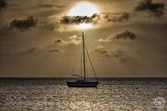 Under the Arubian sun (l3v1k) Tags: sunset sea sun sol beach clouds atardecer golden boat mar ship playa aruba hour nubes caribbean caribe velero 500px ifttt