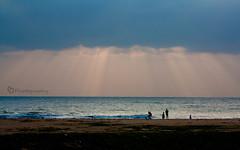 Rays of God (Bhagee...) Tags: morning sea sun india beach water sunrise rays chennai tamilnadu besantnagar brokenbridge adayar bphotography