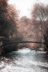 pn20140930-0049-.jpg (Peter Noyce) Tags: from city uk greatbritain bridge original autumn trees england tree english fall water sepia digital river outside outdoors town high europa europe mood moody quiet crossing cross britishisles emotion footbridge unitedkingdom britain outdoor quality photoshopped peaceful nobody sparkle processing gb salisbury british concept emotional conceptual capture wiltshire across emotions moods idyllic autumnal span sparkling pedestrianbridge concepts riveravon digitallyaltered sarum unoccupied wilts exteriorview portraitformat verticalformat instagram peternoyce
