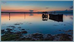 Marina Romea( Ra) Tramonto (Fabio Palella Foto) Tags: blue sunset sea orange lake verde colors see boat barca tramonto mare ship blu vegetation marsh nightscene colori palude notturna arancio vegetazione marinaromea inbarcazione