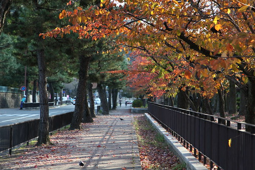 京都、そぞろ歩き