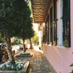 Garden District, New Orleans, Louisiana (Laura Steffan) Tags: travel louisiana neworleans southern squareformat gardendistrict iphone southernliving vsco instagram iphone5s vscocam