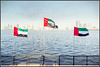 Spirit of the union (Jogesh S) Tags: canon uae approved sharjah nationalday 6d uaeflag canonef1635mmf28liiusm canonef1635f28lii spiritoftheunion