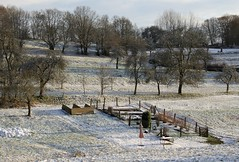 Freezing rural garden (:Linda:) Tags: snow germany village path thuringia uphill baretree brden ruralgarden
