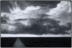 Westerhever (duesentrieb) Tags: sky blackandwhite bw clouds germany landscape deutschland path himmel wolken sw schwarzweiss landschaft schleswigholstein weg westerhever tumblr