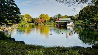General view of Kiyosumi-teien Garden (清澄庭園全景)