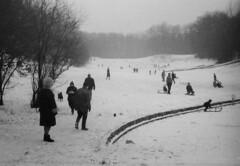 étang gelé-frozen pond (Pierre♪ à ♪VanCouver) Tags: winter brussels vinter hiver bruxelles inverno brussel 冬 exa liliane зима blackandwhitenegative hiversdantan