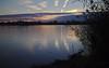 Lone heron sunset