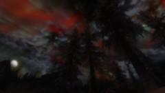 Night (Eternal L'ternel) Tags: eternal skyrim