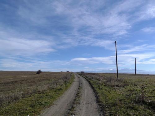 Около Поцърненци / Near Potsârnentsi