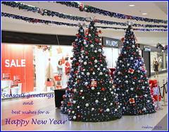 Season's Greetings (ruslou (More off than on)) Tags: christmas xmas christmastree pretoria happynewyear seasonsgreetings ruslou merrychristmas2014 happynewyear2015