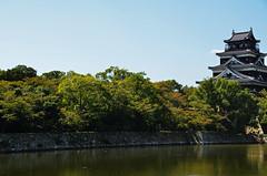 Hiroshima Castle Trees (pokoroto) Tags: autumn trees castle japan october hiroshima  hiroshimacity 2014 hiroshimaprefecture 10     kannazuki  chgoku  themonthwhentherearenogods 26