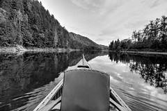 Up the Creek (mikie t) Tags: portrait speed fishing salmon larrys canoe newbrunswick bryan gultch restigoucheriver nbphotos