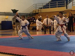stefanou_15_5_2016_knockdown_186