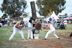 Wood Sawing Competition (Analog Photos) Tags: show australia nsw dubbo