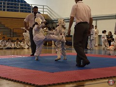 stefanou_15_5_2016_knockdown_148