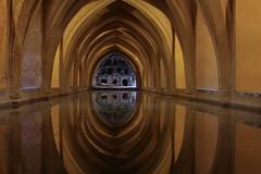 (Antonio M Amador) Tags: photography sevilla arquitectura agua arabe passion alcazar arcos mudejar