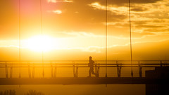 DSC09757 (adam_reynolds) Tags: bridge sunset water silhouette river infinity running jogging stockton tees