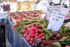 All the Reds with Greens (shirley319) Tags: color june unitedstates farmersmarket michigan beets veggies radish saugatuck 2016 d600 saugatuckmichigan puremichigan
