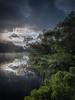 Lochan Spling (Dylan Nardini) Tags: uk trees summer green water forest scotland loch queenelizabeth moning 2016 lochard trosschs