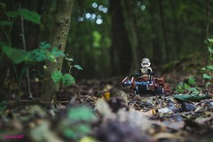 Forest floor (Deanomite85) Tags: starwars speeder endor forest forestfloor woods jedi sith swoop lego minifigure legography toy toys outside daytime colchester highwoods