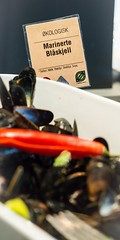 Comfort Runway-2 (DebioNorge) Tags: blskjell buf debiomerke debiomerket foredling foredlingsindustri havprodukter industri kontrollorgan marineprodukter mat matrett matretter matvarer merkeordninger produkter servering sjprodukter skjell varer videreforedling  merke merket