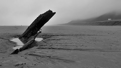 Helvetica - More Than Just A Font (brightondj - getting the most from a cheap compact) Tags: wales rhossili rhossilibeach sand sea waves gower thegower summer2016 bw helvetica shipwreck