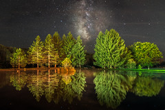 Starlighting in Davis (reflectioninapool) Tags: appalachia astrophotography lake light lit longexposure milkyway nature night outdoors pine pond rectangle reflection sky trees water westvirginia