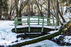 Silta (Jori Samonen) Tags: bridge tree winter snow ice seurasaari island helsinki finland nikon d3200 180550 mm f3556