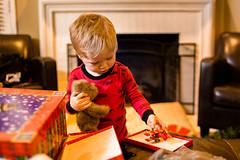 20141201_Christmas Decorating_IMG_0235 (Tom Cannon) Tags: louisvillephotographer kentuckyphotography kyphotography louisvillephotography kentuckykyphotographer thomascannonphotographyllc thomascannonphotography