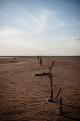 Velha Remanso - Lago de Sobradinho (Tovinho Regis) Tags: pordosol brazil brasil flickr bahia remanso lagoseco bãºzios tovinho lagodesobradinho velharemanso riosã£ofrancisco tovinhorã©gis