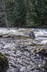 river_3.jpg (Nullality.Nu) Tags: cold west nature water 35mm river flow prime coast is washington moss rocks aqua soft mt baker northwest bokeh south twin fork running falls best rapids sharp vegetation fixed flowing wilderness delicate pnw frio snowqualmie x100
