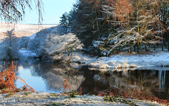 Winter Colours (Dave Snowdon (Wipeout Dave)) Tags: winter snow landscape reservoir northyorkmoors northyorkshire codbeck wipeoutdave canoneos1100d davidsnowdonphotography djs2014