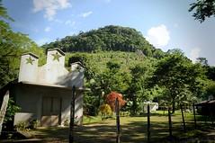 jungle jungle (karolajnat) Tags: mountain green azul mexico agua aqua pyramid palm jungle waterfalls ruinas palenque chiapas mayas misolha aquaazul