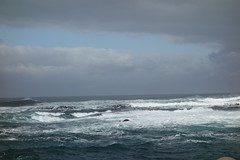 Southafrica-Hout_Bay-Sea_Island_07 (Alf Igel) Tags: africa southafrica island bay south capetown seal kap sealion hout kapstadt seehund halbinsel seahound sdafrica sealwe