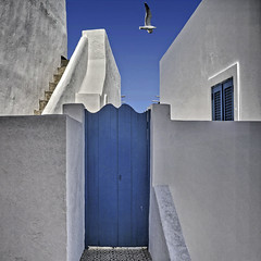 W & B (Nespyxel) Tags: door blue white blu seagull porta sicily isle bianco sicilia eolie panarea nespyxel stefanoscarselli