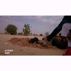 #TimeLapse #hd #mp4 #z2 #Xperia #sony #fire@abumashari #tea ##  # #wood #sand# # # #videoshowapp make by @videoshowapp (photography AbdullahAlSaeed) Tags: wood fire timelapse sand tea sony hd z2 mp4     xperia  videoshowapp