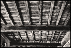 dreamed home ceiling (esquizometrica) Tags: wood bw white black texture textura blanco monochrome sepia monocromo madera negro bn ceiling techo gastado