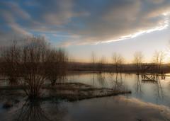 Passejada a l'hora mgica (jocsdellum) Tags: sunset atardecer girona laselva passejada capvespre desprsdelapluja estanysdesils