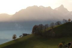 Stockhorn ( Berg mountain montagne ) in den Alpen - Alps bei Heiligenschwendi im Berner Oberland im Kanton Bern in der Schweiz (chrchr_75) Tags: november mountain alps berg montagne schweiz switzerland suisse swiss alpen christoph svizzera berner berneroberland oberland 2014 stockhorn 1411 suissa chrigu kantonbern chrchr hurni heiligenschwendi chrchr75 chriguhurni chriguhurnibluemailch november2014 hurni141123