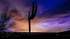 Electric Feel Alt (Joh) Tags: city arizona cactus sky mountain storm mountains nature rain electric night clouds america photography lights mt looking cloudy az down monsoon lightning saguaro elegant striking raining strikes lemmon nightscapes monsoons 500px