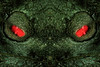 Resistance Is Futile (Tau Zero) Tags: tree eyes spirit alien scifi redgreen digitalmirror macromondays